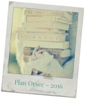 photo-libre-plan-orsec-21